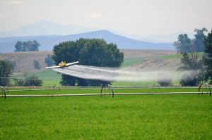 Dow Chemical Pesticides