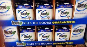 Roundup Warning Label